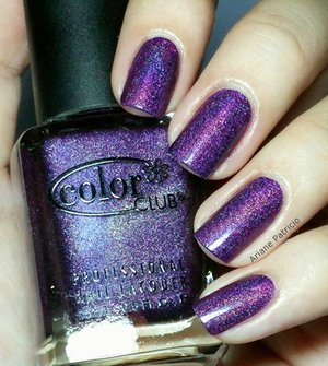 color-club-wild-at-heart
